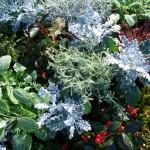 Saisonale Bepflanzung Allerheiligen Winter München
