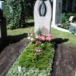 Euonymus Einfassung mit Bepflanzung Friehof München