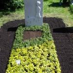 Sonder Grab Bepflanzung zweifarbig mit Euonymus Fortunei