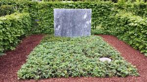 Waldstenia Grabgestaltung Friehöfe München