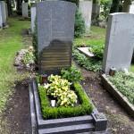Taxus in einer Steineinfassung am Ostfriedhof in München