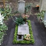 Taxus um einen liegenden Grabstein auf einem Urnengrab am Waldfriedhof in München